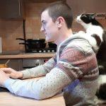 どうしても構ってほしくて飼い主に乗る猫ちゃん♪