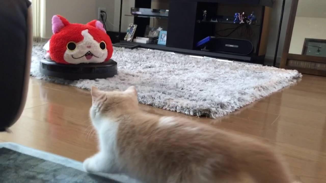 子猫が怖がるのでルンバを猫っぽくした結果ww
