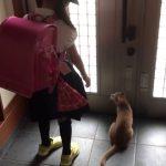 外に出たい猫と脱走をかわす男の子のやり取りが可愛い♡