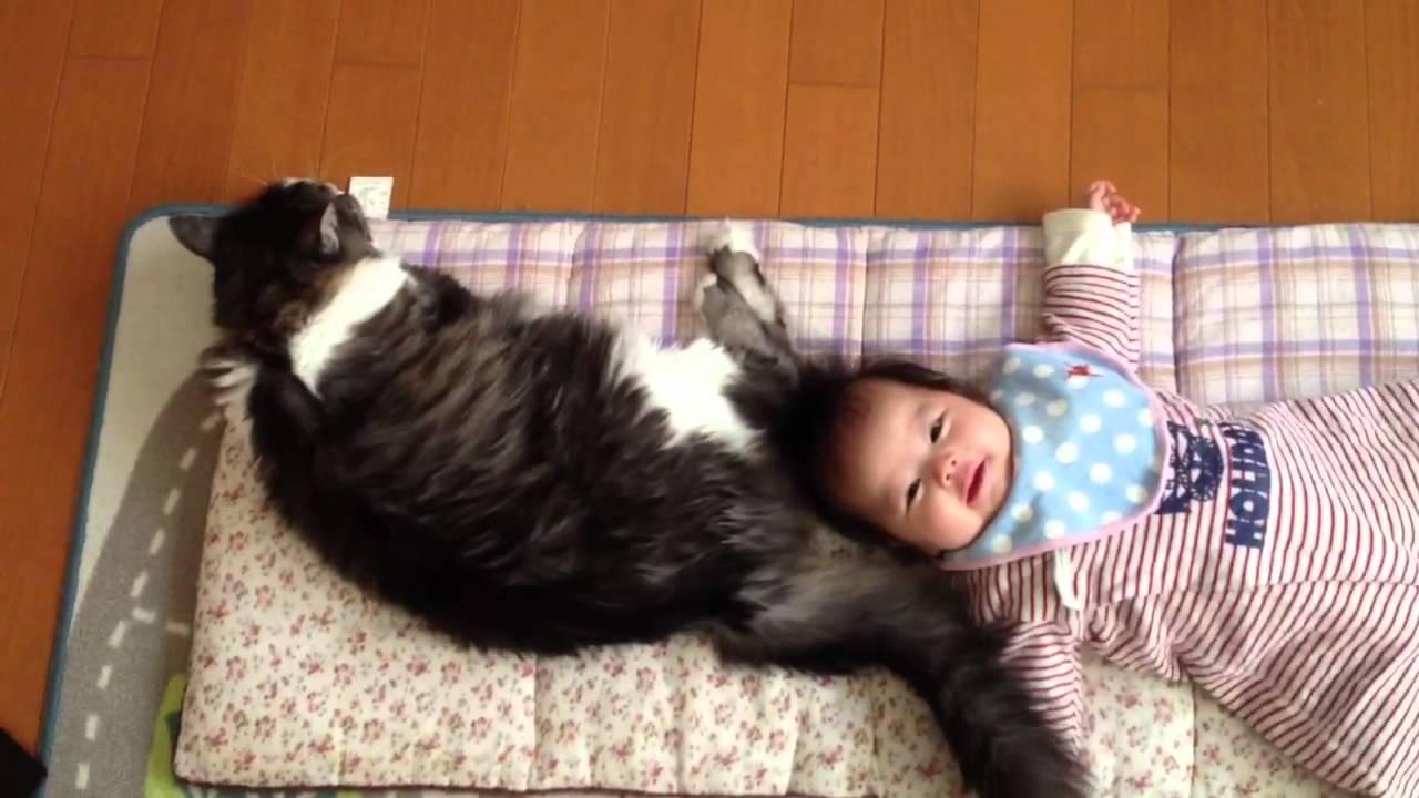 しっぽで赤ちゃんをあやす器用な猫♪