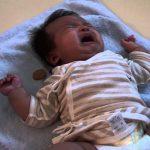 泣いている赤ちゃんにおやつをあげるワンちゃんが健気で萌える…!