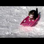 これはカワイイ♡ソリ遊びをする猫