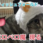 甘えん坊な猫ちゃんが飼い主さんの手を舐め尽くす!!♡