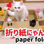 遊んでもらおうと思ったのに・・・!猫ちゃんが折り紙を破壊しまくりな件(・∀・)