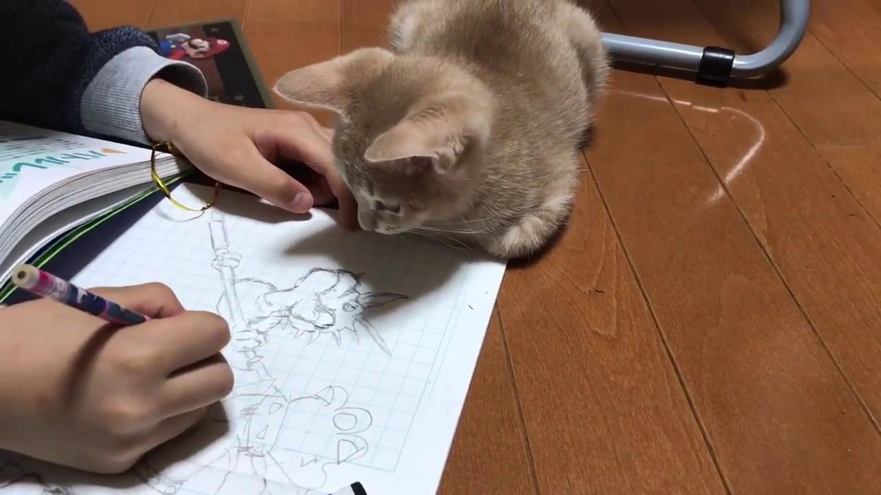 お絵描きしてるといたずらしちゃうぞ!そんなネコちゃんがとてもかわいい♡