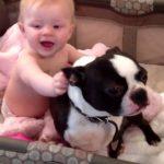 仲良しすぎる人間の赤ちゃんとワンコ